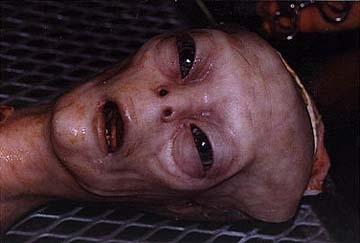 Grey Alien Autopsy