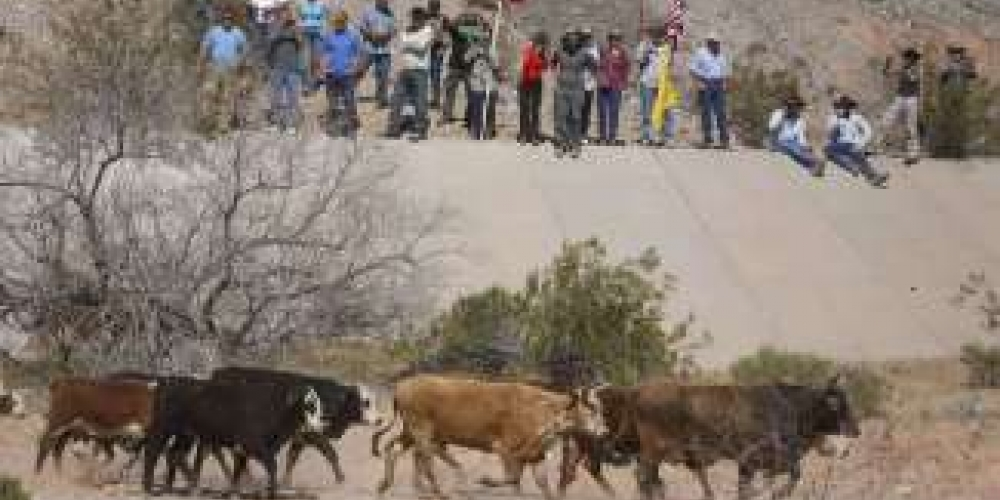 Images of Cattle Rancher Bundys Standoff with U.S. Goverrment Feds
