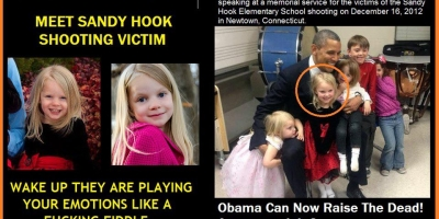 THE SANDY HOOK GOVERNMENT CONSPIRACY GUN GRAB!