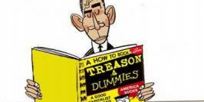 TREASON FOR DUMMIES 101