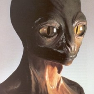 Reptilians Alien Picture
