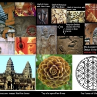 The Pine cone symbolically stands for the flower of life symbol