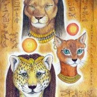 Cat Humanoid Star Gods