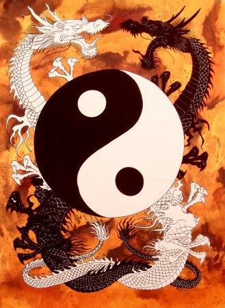 Yin Yang Duality