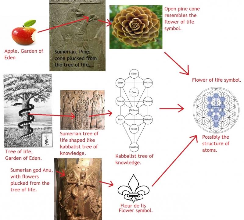 Flower of life, tree of life, garden of eden, kabbalist tree of knowledge, fleur de lis, Apple