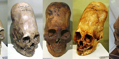 DNA Analysis Of Paracas Elongated Skulls Released. The Results Prove They Were Not Human!